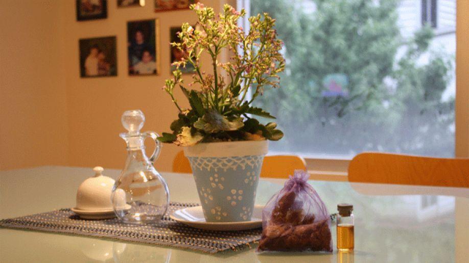 Floresymas Flores aromaticas Blog 11