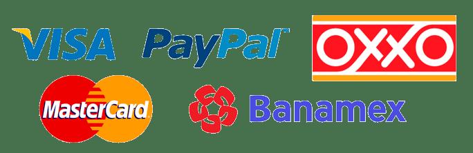 pagos logos2