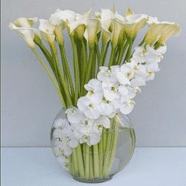 envia arreglos florales para condolencias