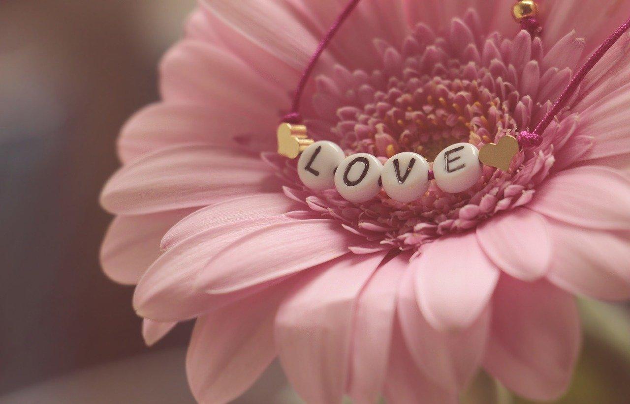San valentin 2 flores y mas flores
